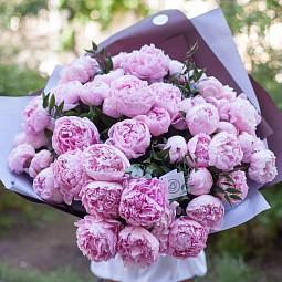 Пион: красота цветка и польза для здоровья в одном флаконе